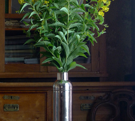 Turn an old thermos flask into a flower vase